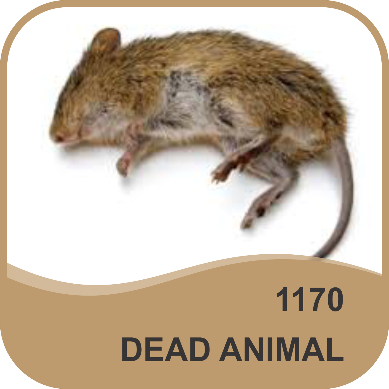 DEAD ANIMAL ODOR NEUTRALIZER