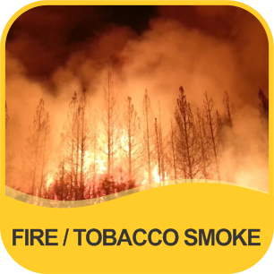 FIRE SMOKE/TOBACCO SMOKE & SMELL